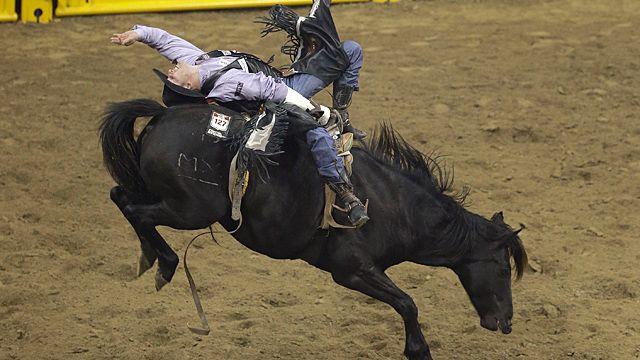Jesse Davis of Power, Mont. rides Black Coffee