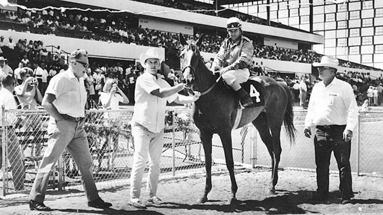 horseracing1
