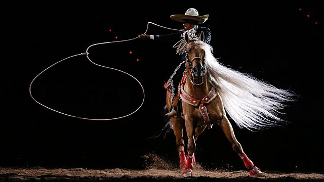 rodeo performer