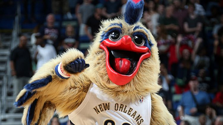 New Orleans Pelican
