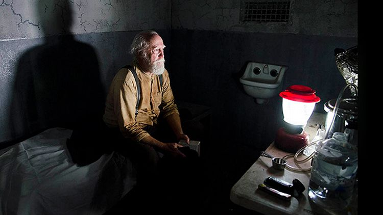 Hershel on The Walking Dead Season 4 Episode 5 (AMC)
