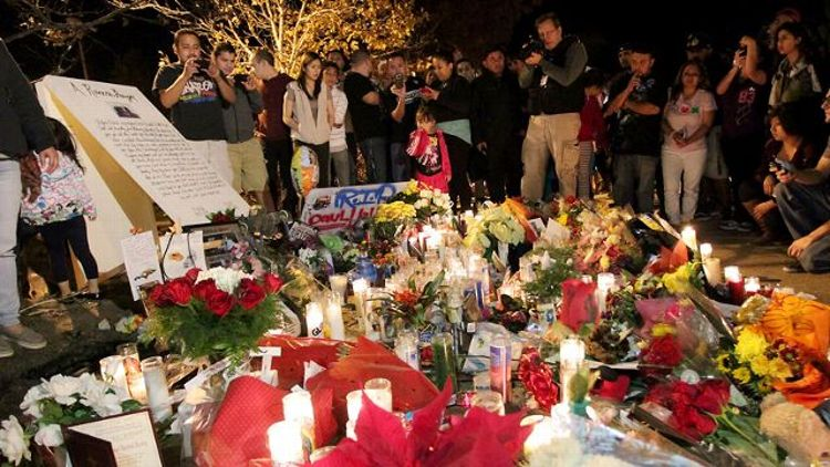 Dead Man's Curve: The Scene at Paul Walker's Crash Site and the Way We Mourn Now