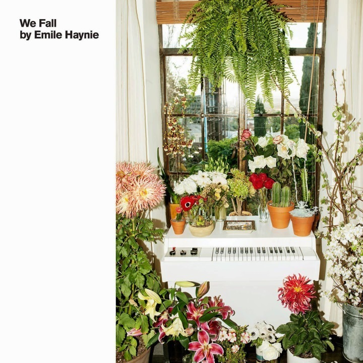 emile-haynie-we-fall