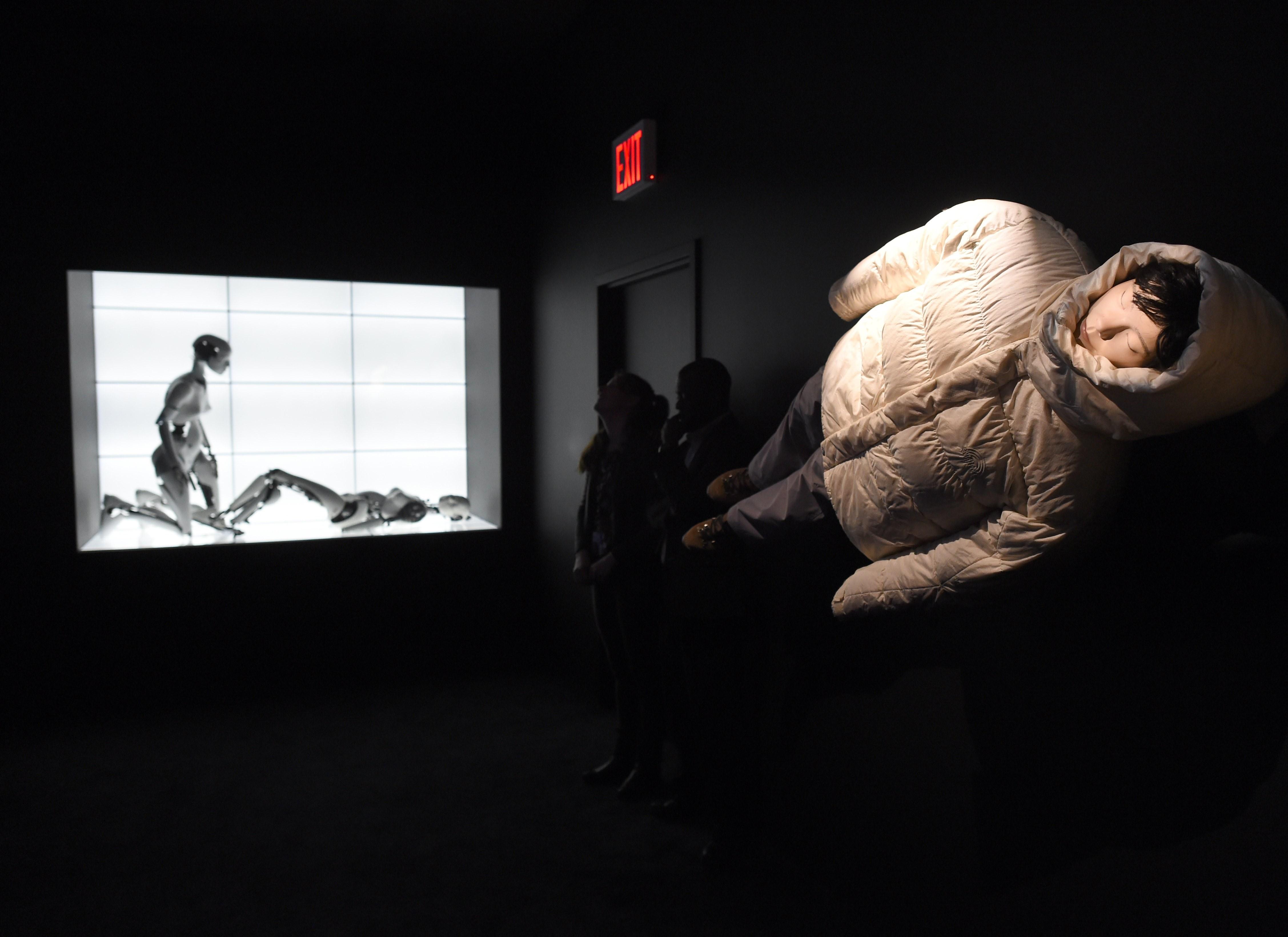 US-ART-BJORK-MOMA
