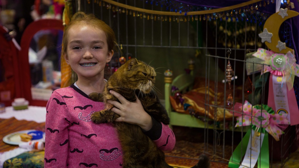 paige-and-gypsy-cats-hp