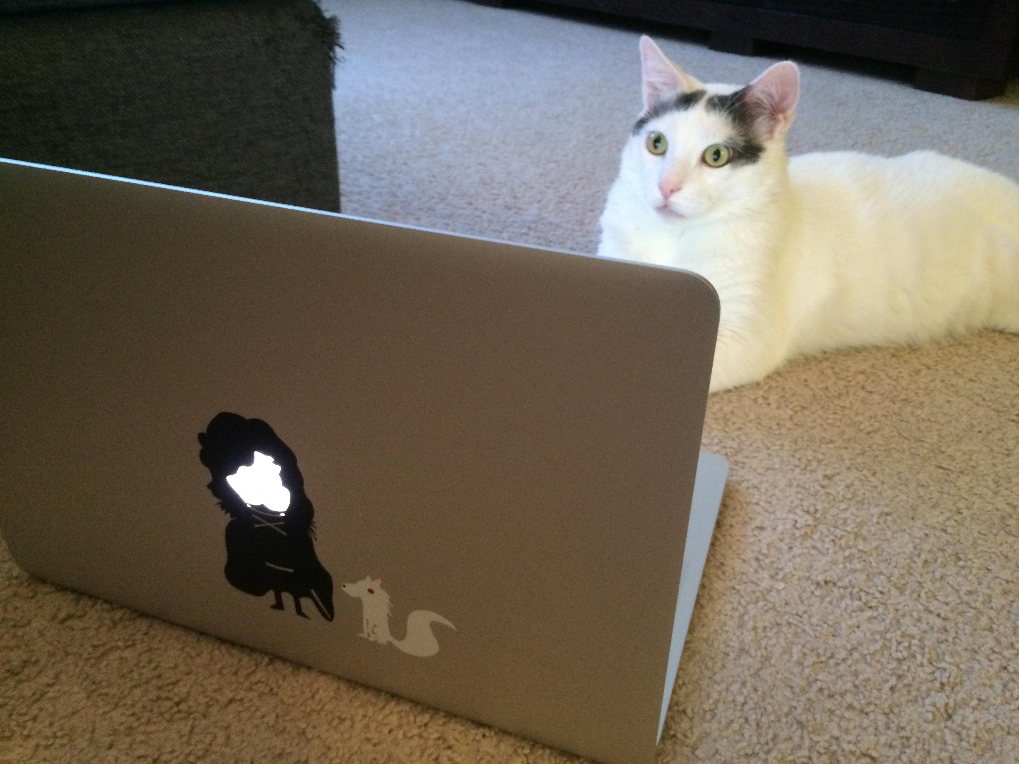 halo_laptop