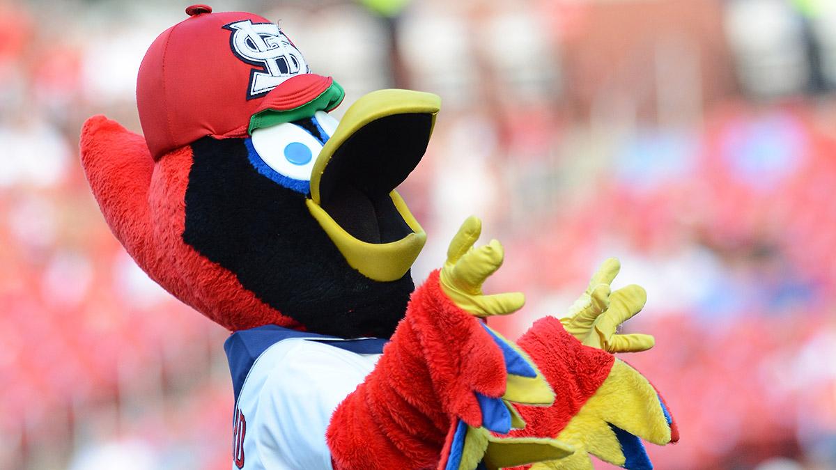 st-louis-cardinals-mascot-tri