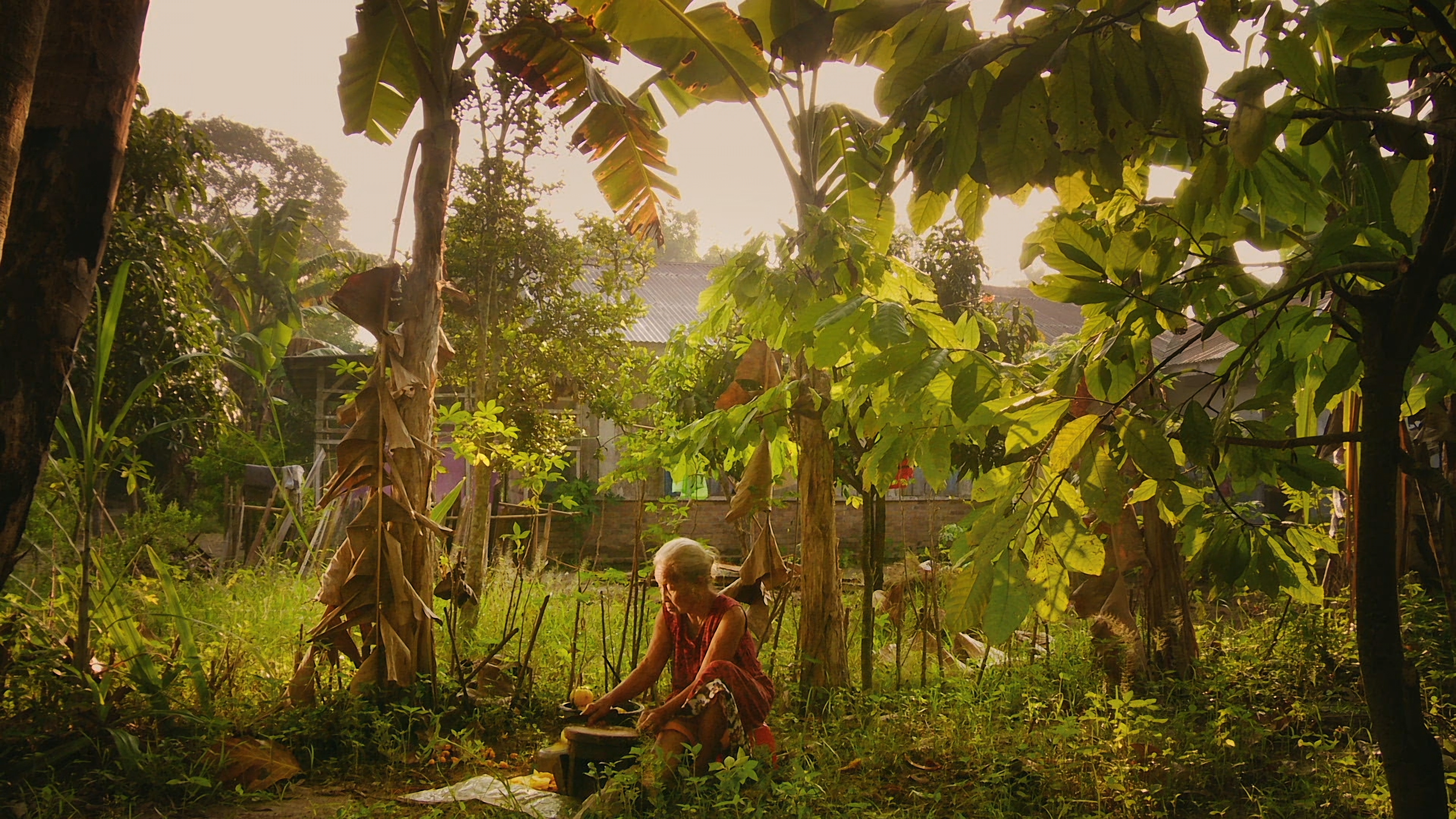 A scene from 'The Look of Silence.'