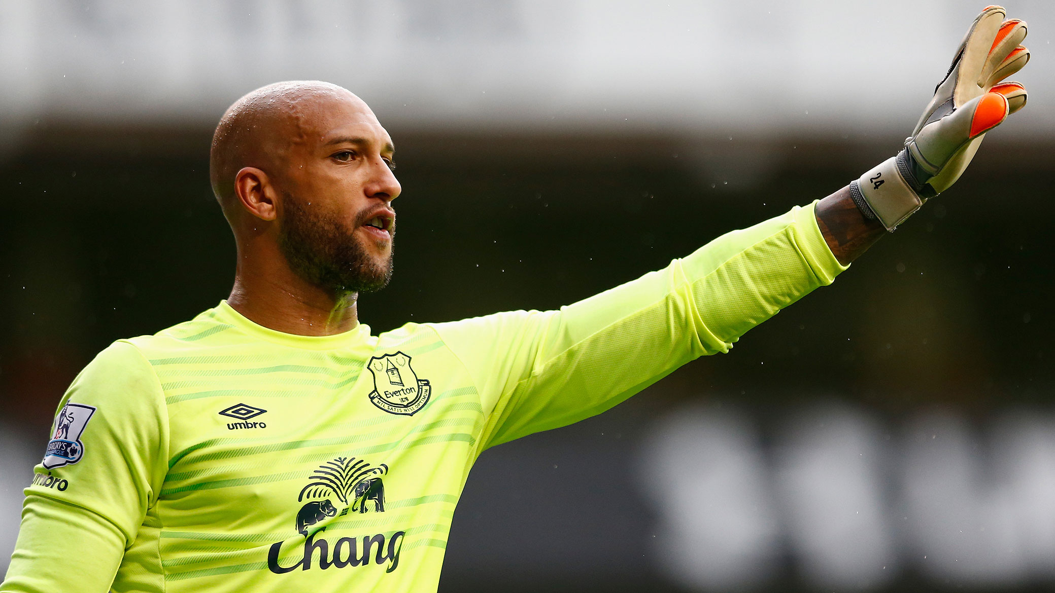 tim-howard-everton-green